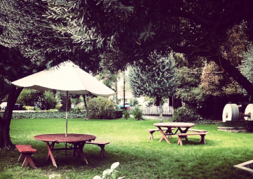 Our charming front lawn with picnic tables